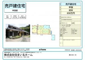 info_sheet_01